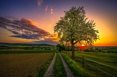 *sunset step* by Ralf Thomas on 500px