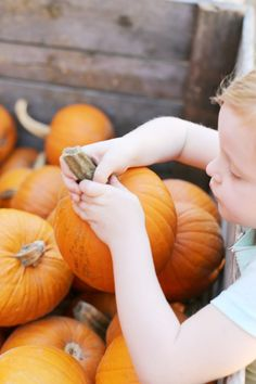 At the Pumpkin Patch | Photo by Cyd Converse of The Sweetest Occasion