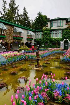 Butchart Gardens Victoria Britisch-Kolumbien Kanada Butchart G Canada Vancouver, Victoria Vancouver Island, Beautiful Landscapes, Beautiful Gardens, Beautiful Flowers, Wonderful Places, Beautiful Places, Buchart Gardens, Victoria British Columbia