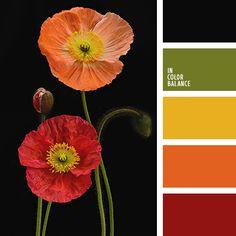 желтый, зеленый, красный, оливковый, оранжевый, подбор цвета в интерьере, цвет красных маков, цвет маков, черный, черный и красный, шафрановый.