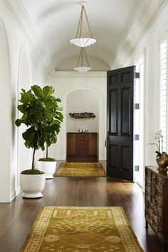 Fiddle leaf fig trees have been the stars of the home decor world for quite a while now. They are also one of the most finicky plants out there, so beware before taking the plunge and investing in a fig tree. I learned the hard way as my first fig died a slow, painful death after several months.