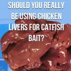 Should You Really Be Using Chicken Livers For Catfish Bait?