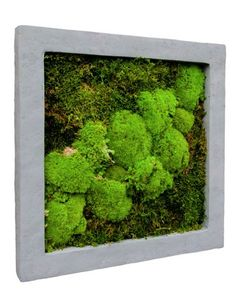 Frame Polystone nucast raw - platmos en bolmos