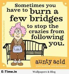 Aunty Acid  Burn Bridges                                                                                                                                                                                 More