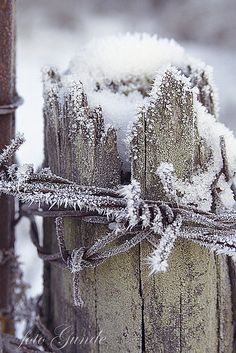 silver thaw  by Linda Gunde, via Flickr