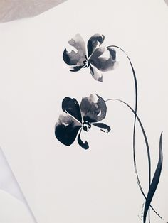 See more of marinaguiu's content on VSCO. Japanese Ink Painting, Sumi E Painting, Chinese Painting, Watercolor Paintings, Watercolor And Ink, Watercolor Flowers, Hand Lettering Art, Hand Drawn Flowers, Letter Art
