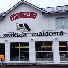 """""""Lehmä katolla #juustoportti #meijeri #juusto #lehmä #maito #loma #jalasjärvi  #dairy #cow #milk #cheece #holiday #finland"""""""