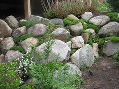 Garden Rock Wall | Bahçe | Pinterest | Gardens, Terrace And Cascading  Flowers