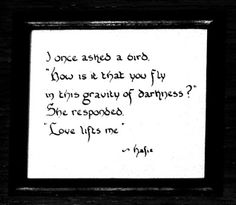 "I once asked a bird, ""How is it that you fly in this gravity of darkness?"" She responded, ""Love lifts me."" -Hafiz"