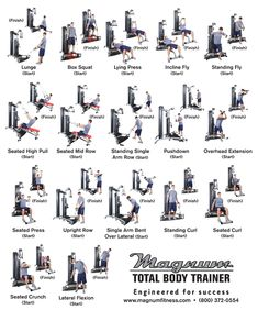 Weider Home Gym Exercise Chart