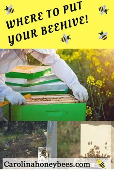 Finding the best location for your beehive is not always easy. But, with a little planning you can put your beehive in a suitable place. Top Bar Hive, Bee Hive Plans, Beekeeping Equipment, Beekeeping Supplies, Beekeeping For Beginners, Bee Supplies, Raising Bees, Bee Boxes, Backyard Beekeeping