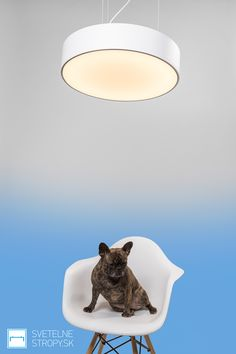 Svetelný strop CIR 600. Bratislava, Table Lamp, Lighting, Home Decor, Table Lamps, Decoration Home, Room Decor, Lights, Home Interior Design