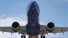 European agency bans boeing 737 max 8 from airspace Tui Group, Photography New York, Boeing Planes, American Union, Jet Fly, Major Airlines, Chicago, Southwest Airlines