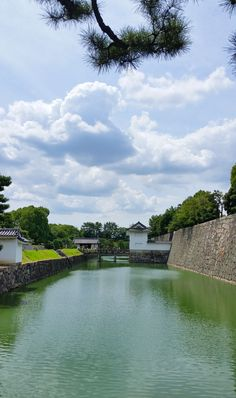 kyoto japan travel tips. japan things to do. travel inspiration. beautiful places to visit. east asia travel destinations. Japan Travel Tips, Asia Travel, Japan Travel Photography, Kyoto Itinerary, Nijo Castle, Kyoto Japan, Beautiful Places To Visit, World Heritage Sites, Where To Go