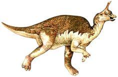 Tsintaosaurus. looks really drunk... way to happy. :)