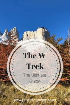 This is the ultimate hiking and preparation guide to completing the W Trek in Torres Del Paine National Park in Patagonia. Patagonia Hiking, Torres Del Paine National Park, Bucket List Destinations, Cool Cafe, Adventure Activities, Hiking Tips, South America Travel, Best Hikes, Trip Planning