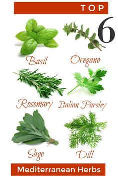I love to use fresh herbs when I am cooking! When I started looking at the types of herbs I use on a regular basis, I realized they all were herbs found in the Mediterranean climate! Easy Garden, Herb Garden, Garden Ideas, Types Of Herbs, Mediterranean Garden, Fresh Herbs, Gardening Tips, Food To Make, Easy Meals