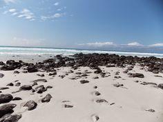 Ist, Moto e Paraglider: 26º dia: em Galápagos, Ilha Santa Cruz