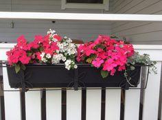 Kesän kukkijat