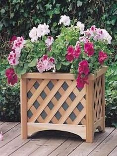Beautiful wooden planter boxes