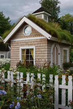 Garden Shed with a green roof. Charming!