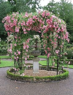 rose garden - Start a trend beautifying   your town. Let those with the resources contribute to it, and have   schoolchildren help plant and prune. Plant trees !! #RoseGarden