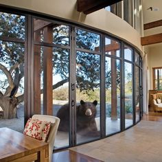 Glass wall system protects against bears From: NanaWall Systems | Qualified Remodeler