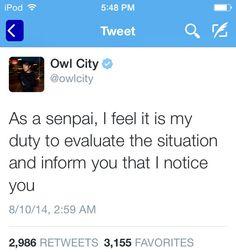 senpai has noticed me