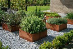 Billedresultat for højbede Raised Garden Beds, Raised Beds, Garden Gadgets, Potager Garden, Farm Gardens, Landscape Architecture, Garden Inspiration, Vegetable Garden, Outdoor Living