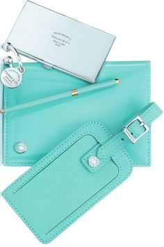 Found the BEST gift - Tiffany luggage tag N passport holder ❤ ❤ ❤     Comment by previous pinner. 95821684fd