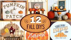 🍁 🍁 TOP 12 FALL DIYS 🍁    Dollar Tree DIYS - YouTube Dollar Tree Fall, Dollar Tree Decor, Dollar Tree Crafts, Autumn Decorating, Pumpkin Decorating, Fall Arts And Crafts, Fall Projects, Craft Projects, Craft Ideas