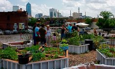 Around the world, urban farms and gardens are cultivating good food on underutilized land.