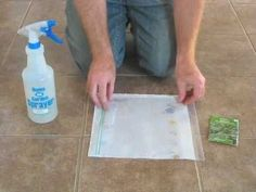 Seed Viability Test -- an easy way to test your seeds to make sure they're ready to plant.