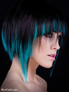 Colorful Hair Dye Ideas | Latest Colorful Hair Highlights Ideas nick_hemsley_hair_color_black ...