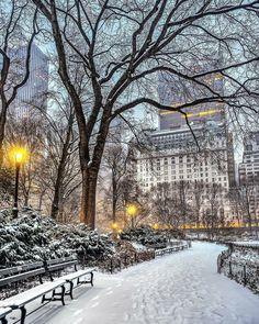 Central Park New York City City Aesthetic, Travel Aesthetic, Wallpaper City, Iphone Wallpaper, New York Weihnachten, Winter Szenen, Ville New York, New York Christmas, Xmas