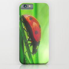 Kleiner Käfer im hohen Gras / Kleine Käfer im hohen Gras iPhone & iPod-Kasten