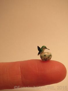 Custom Order Dollhouse miniature hummer by FannimiNiATURE
