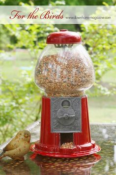 For my love of gumball machines and birds, great idea!