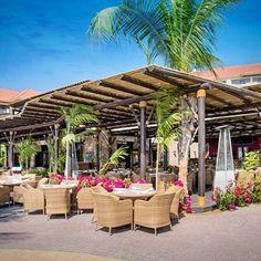 Timber Pergola at Sofitel The Palm Timber Pergola, Wooden Pergola, Beach Resorts, Hotels And Resorts, Sofitel Hotel, Concrete Jungle, The Ordinary, Hanging Out, Dubai
