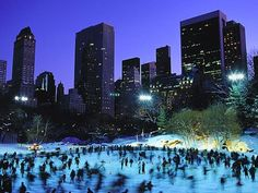 Trump Wollman Rink at Central Park - The 10 Most Romantic Spots in NYC (Winter Edition) | Complex