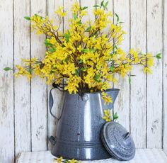 Forsythia & Blue Country Tin Coffee Pot