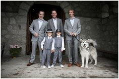 Grey groomsmen suits and not to mention the beautiful Husky