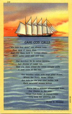 Cape Cod Calls