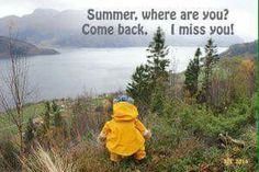 Love, Comebacks, Norway, Raincoat, Teddy Bear, Inspirational Quotes, Autumn Rain, Nature, Summer
