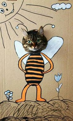 The easiest way to get your cat to wear a costume!