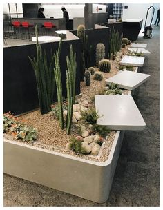 Beautiful colors, designs and trends! Get inspired for your interior design projects! Click the photo to see more! Dry Garden, Garden Cafe, Indoor Garden, Outdoor Gardens, Interior Garden, Interior Plants, Cafe Interior, Top Interior Designers, Office Interior Design