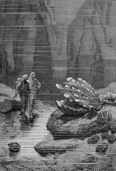 "floserber: "" Alphonse de Neuville's engravings for 20000 Leagues Under the Sea by Jules Vernes. """