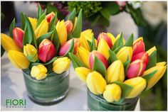 Hand picked tulips for our seasonal display