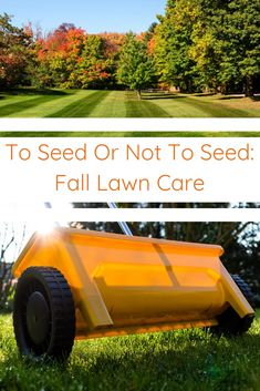 Rather than overseeding your lawn this fall, try this strategy that encourages your lawn to pack on root mass, while you protecting it from fall germinating weeds.