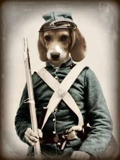 Dog Art Print Beagle Art Civil War Mixed Media by Watchful Crow Arts